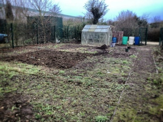 Allotment 2