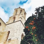 Oranges and cathedral
