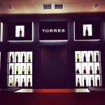 Wine tasting at Bodegas Torres