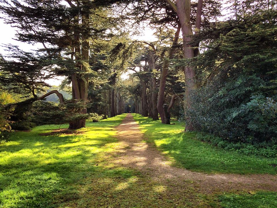 Clumber Park 4