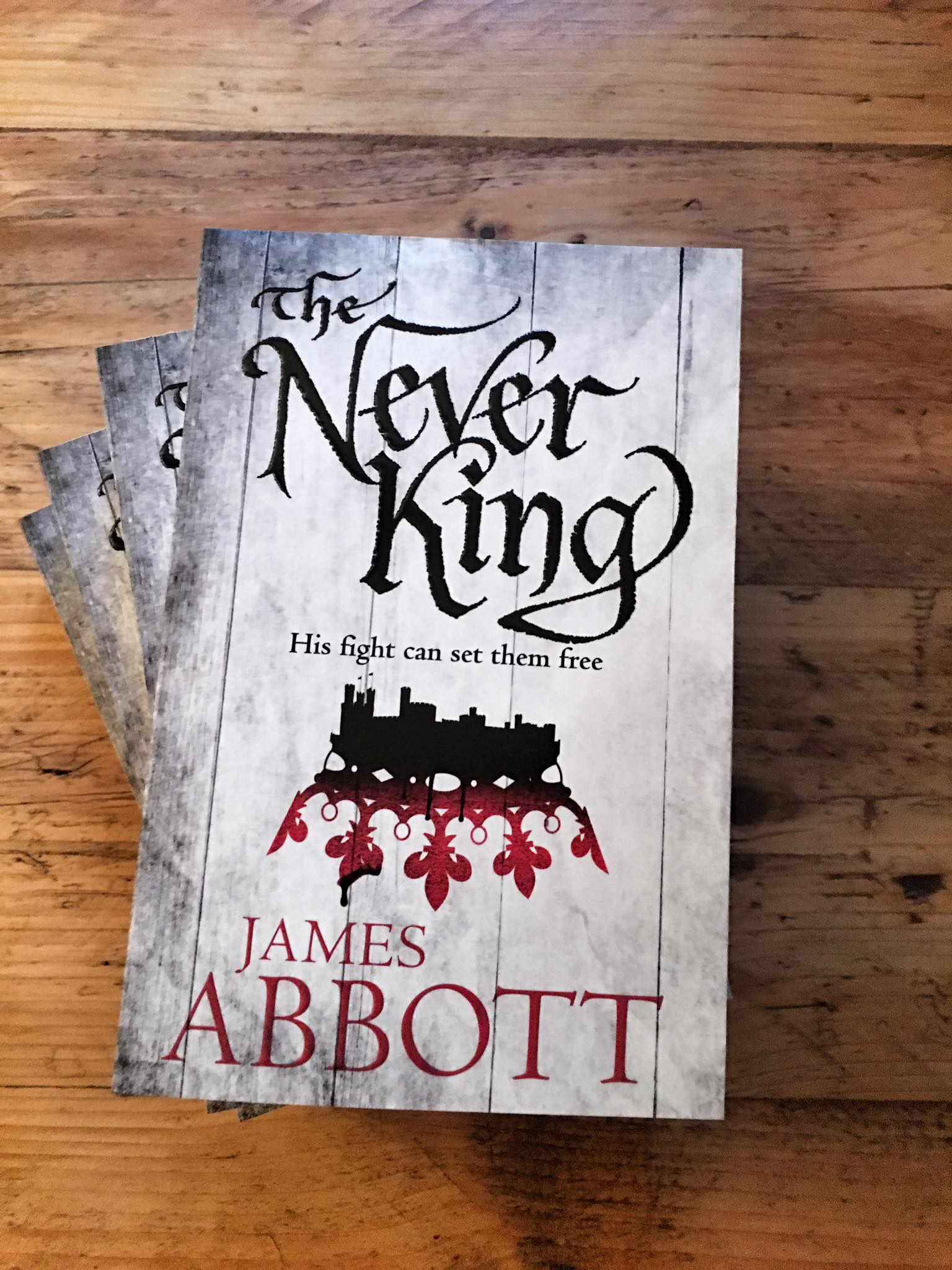 Never King books
